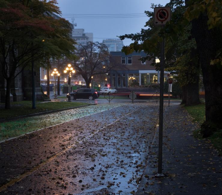 Dark_Wet_Morning.jpg